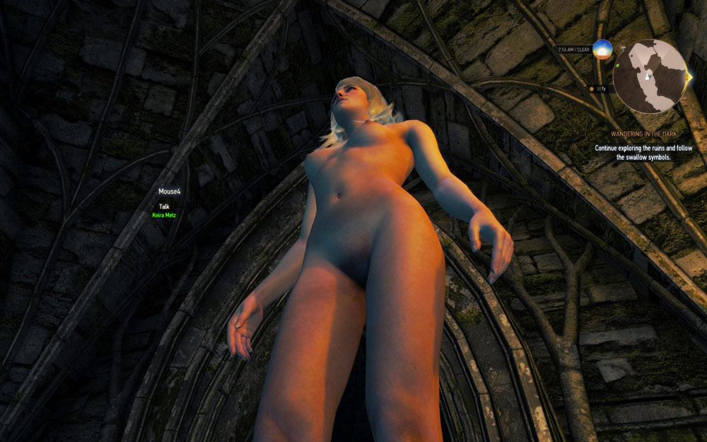The witcher nude